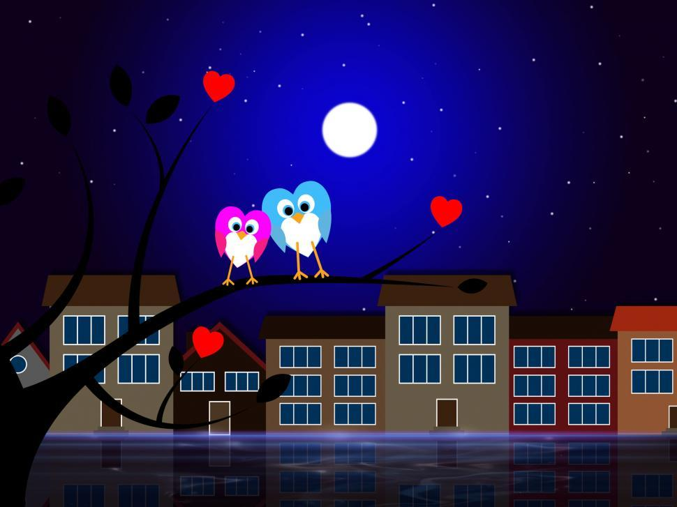 Download Free Stock Photo of Moon Owls Represents Night Time And Apartment