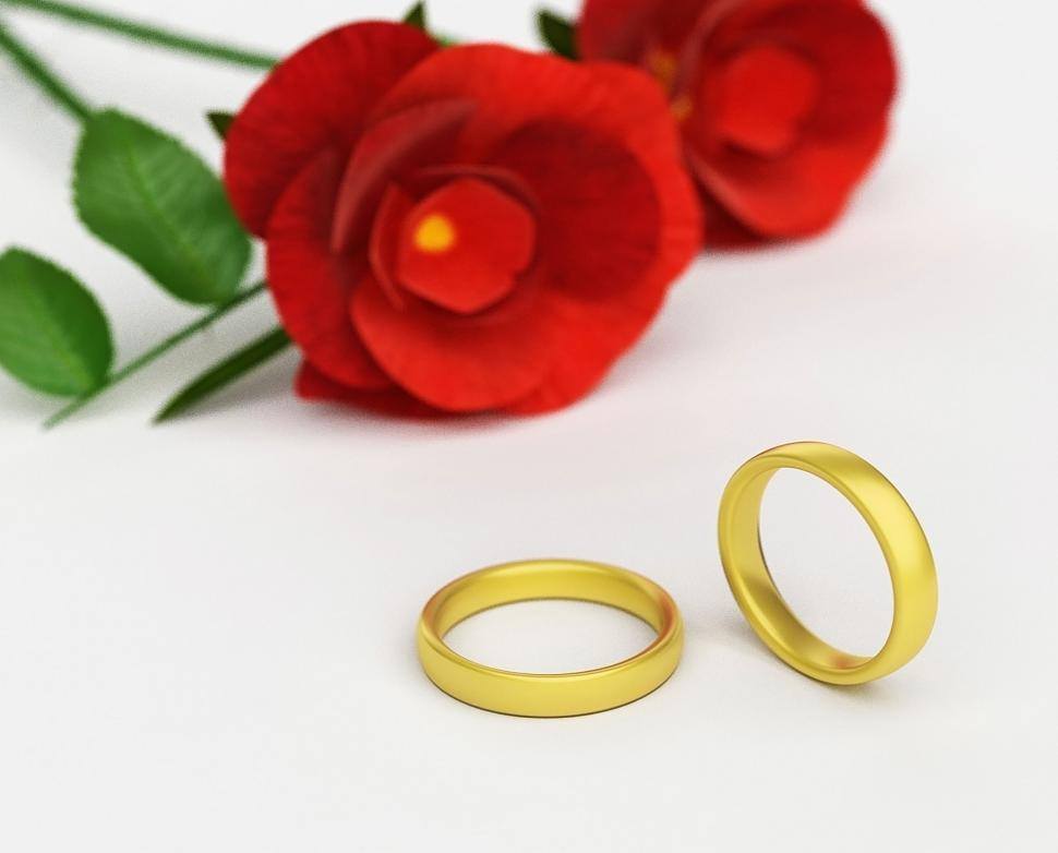 Download Free Stock HD Photo of Wedding Rings Means Find Love And Adoration Online