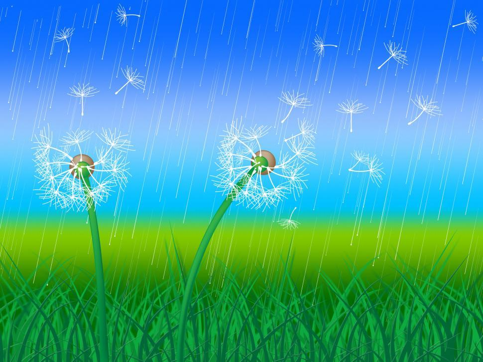 Download Free Stock HD Photo of Dandelion Grass Shows Sky Flower And Environment Online