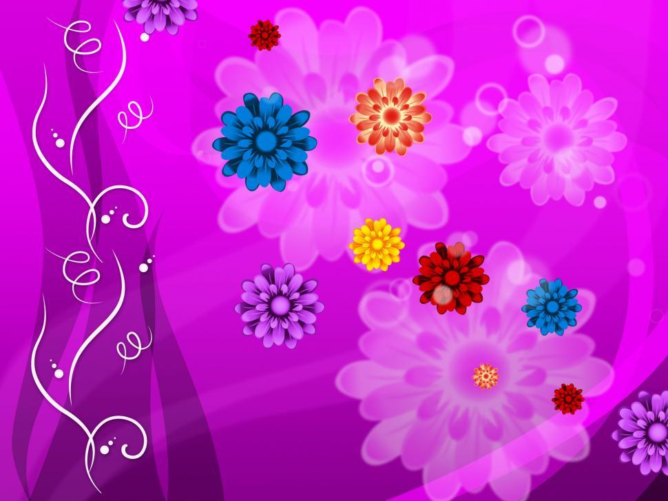 Download Free Stock Photo of Purple Floral Background Means Colorful Flowers And Petals