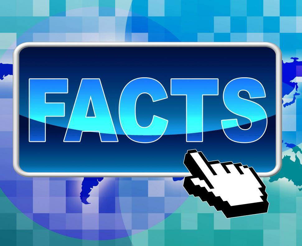 Download Free Stock HD Photo of Facts Button Shows World Wide Web And Answers Online