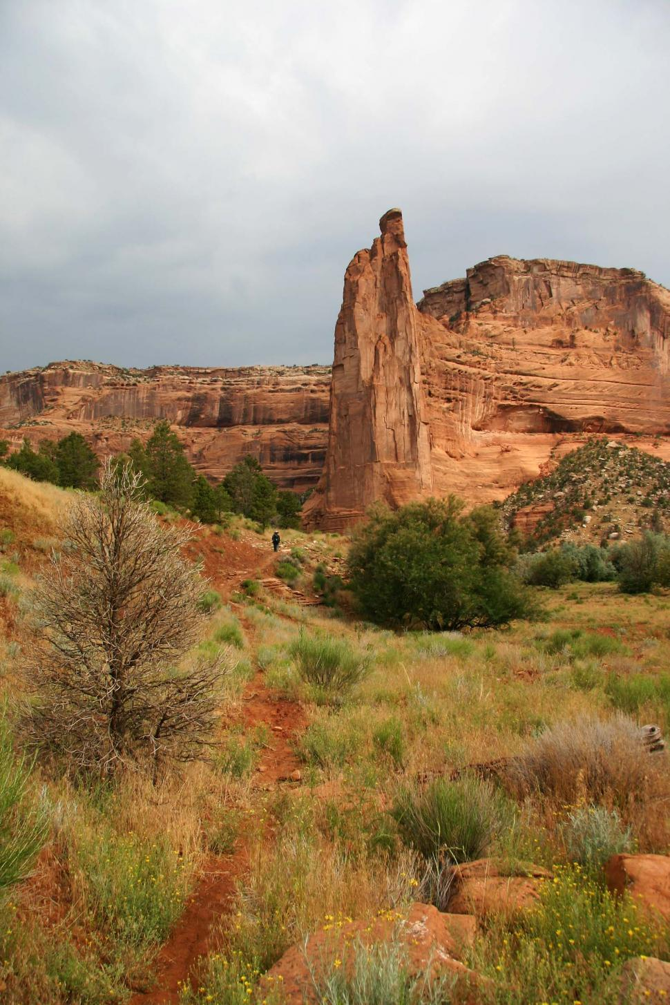 Download Free Stock Photo of Canyon de Chelly