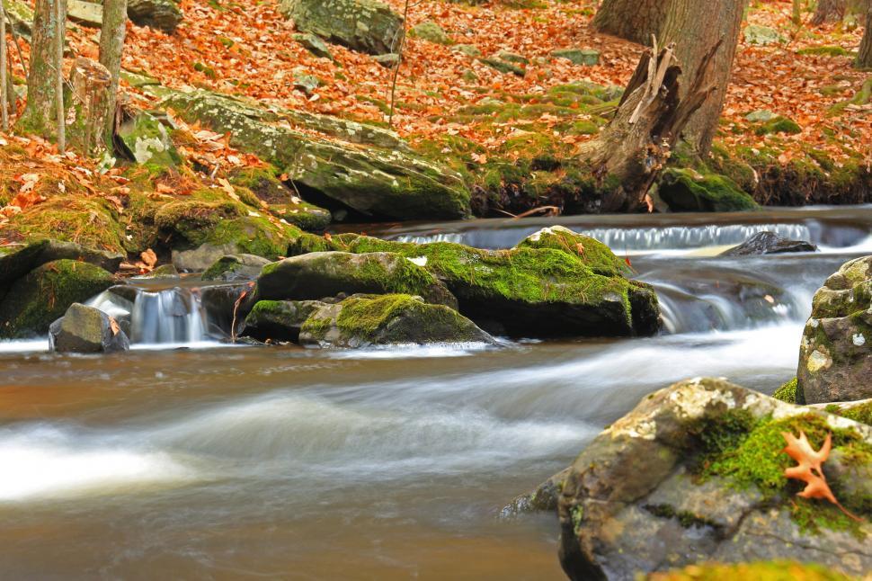 Download Free Stock Photo of Running water around moss covered rocks