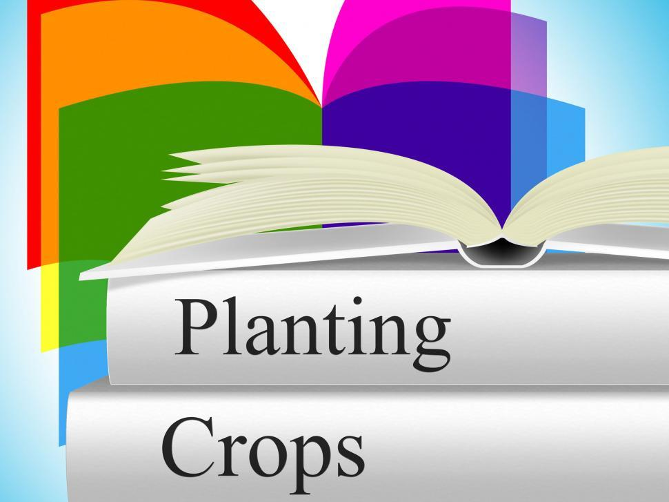 Download Free Stock Photo of Planting Crops Indicates Agrarian Cultivation And Field