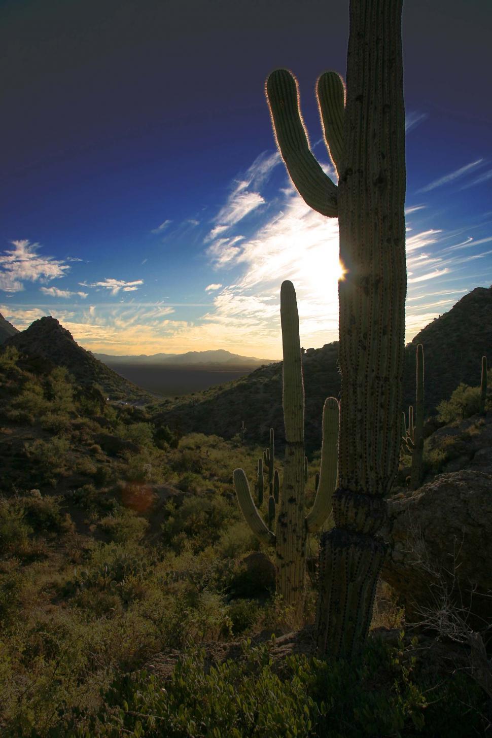 Download Free Stock Photo of Desert mountain pass at sunset