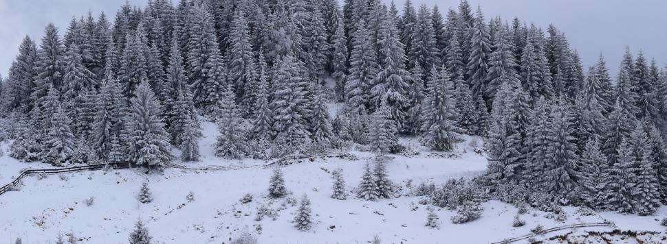 Download Free Stock HD Photo of Wide landscape of mountains and forests covered with heavy snow  Online