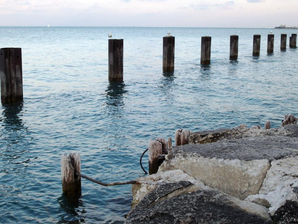 Download Free Stock HD Photo of Lake Shore Online
