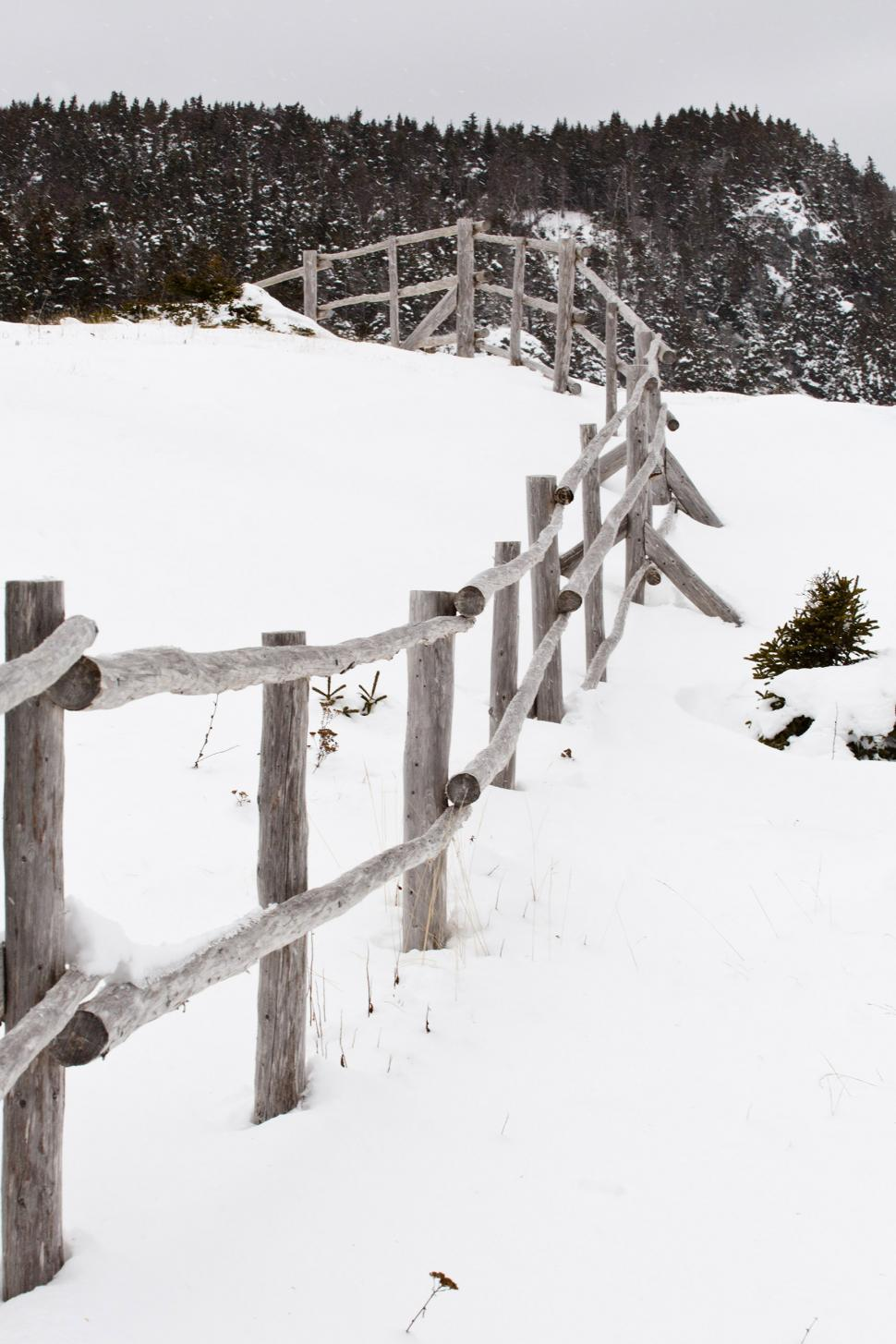 Download Free Stock HD Photo of Winter Scene Online