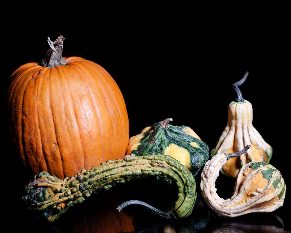 Download Free Stock HD Photo of Gourds Online