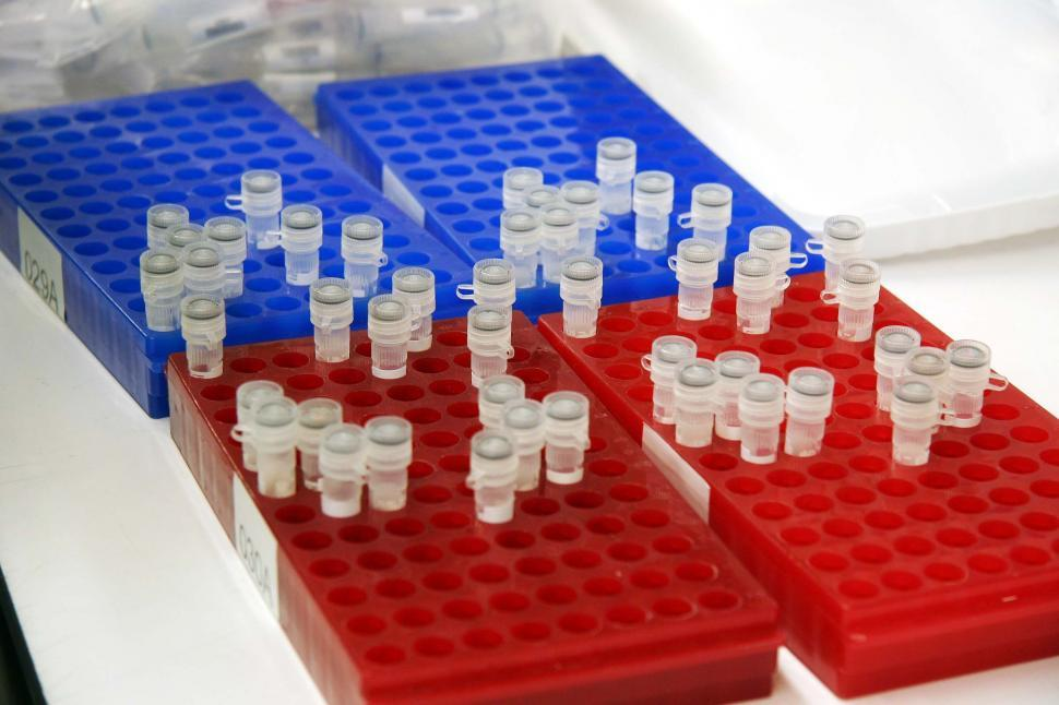 Download Free Stock HD Photo of Red and blue sample trays Online