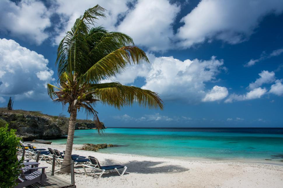 Download Free Stock Photo of beach turquoise sea water travel ocean tropical sand coast summer vacation sky island seascape resort tourism landscape bay tree wave palm relaxation paradise coastline caribbean scenic sun idyllic sunny horizon holiday shore cloud relax tranquil lagoon true laurel vacations scene clear sunlight clouds destinations scenery exotic