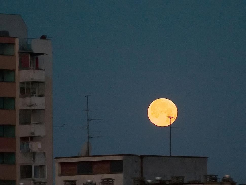 Download Free Stock Photo of Moon in the city