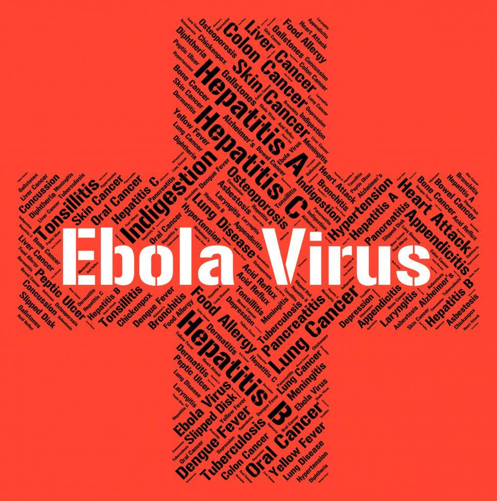 Download Free Stock Photo of Ebola Virus Represents Microbe Pathogens And Disease
