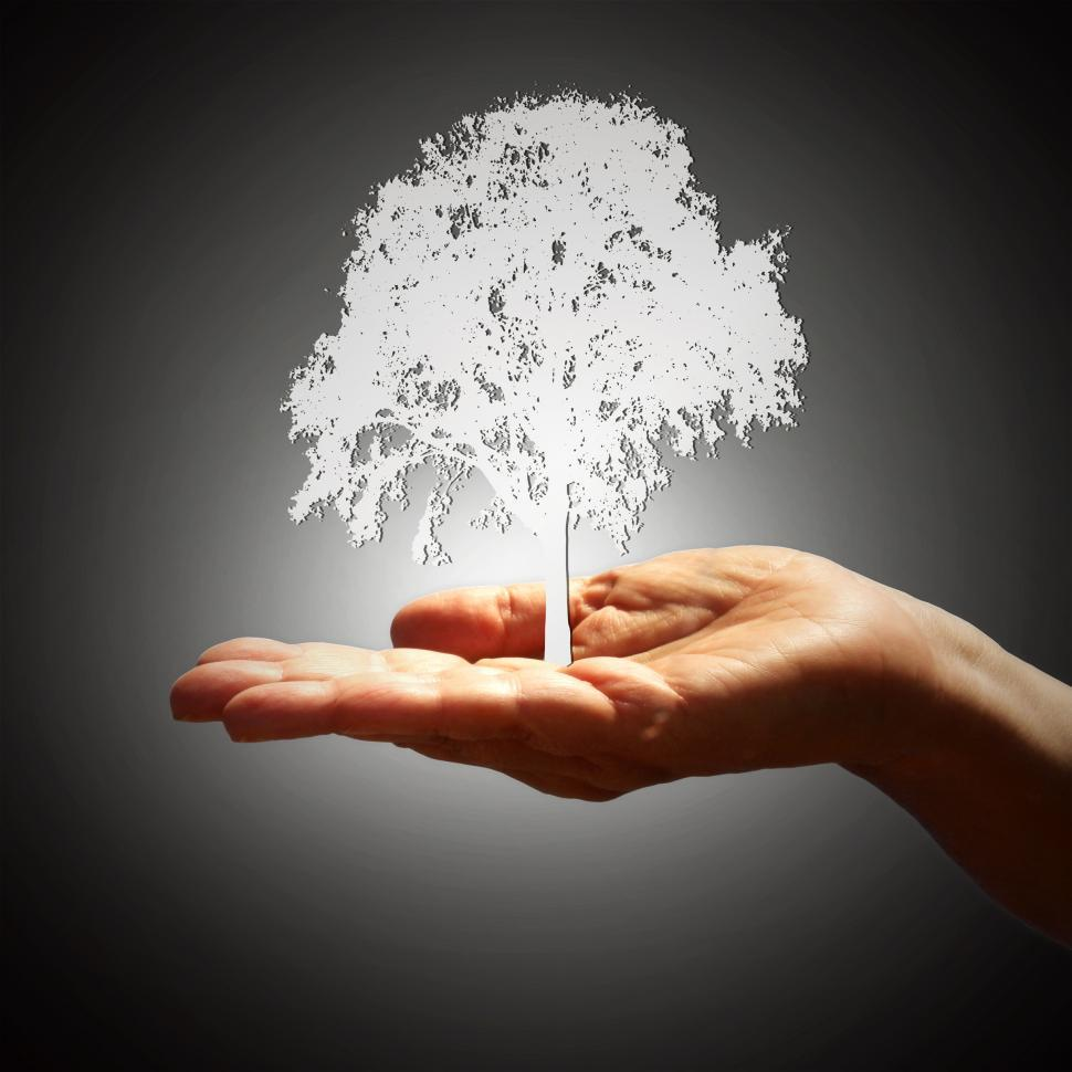 Download Free Stock Photo of Tree Silhouette on Hand - Growth Concept - Dark Background