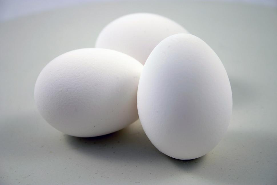 Download Free Stock HD Photo of Eggs Online