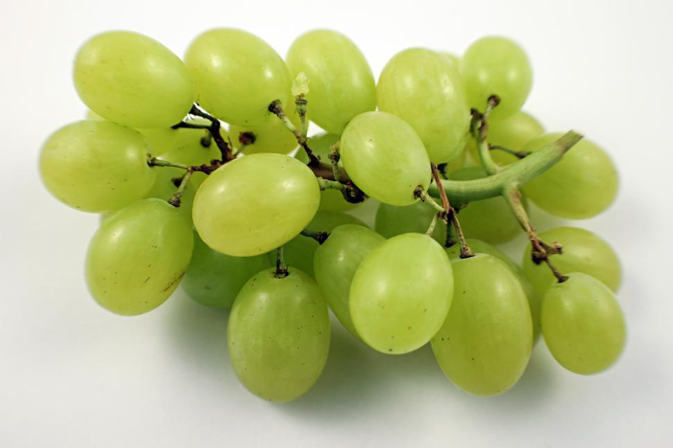 Download Free Stock Photo of Grapes
