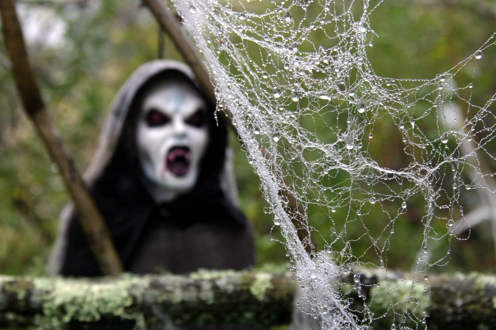 Download Free Stock Photo of halloween scary frightening spooky ghoule decoration haunted web spider evil scare fangs bloody drips drops wet