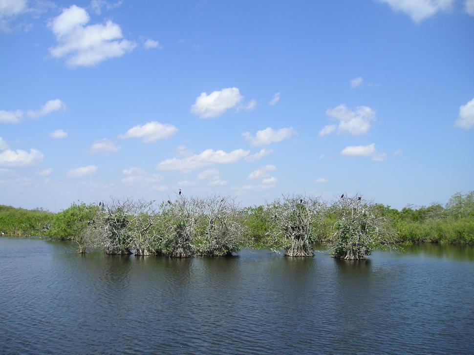 Download Free Stock Photo of Everglades National Park (a)