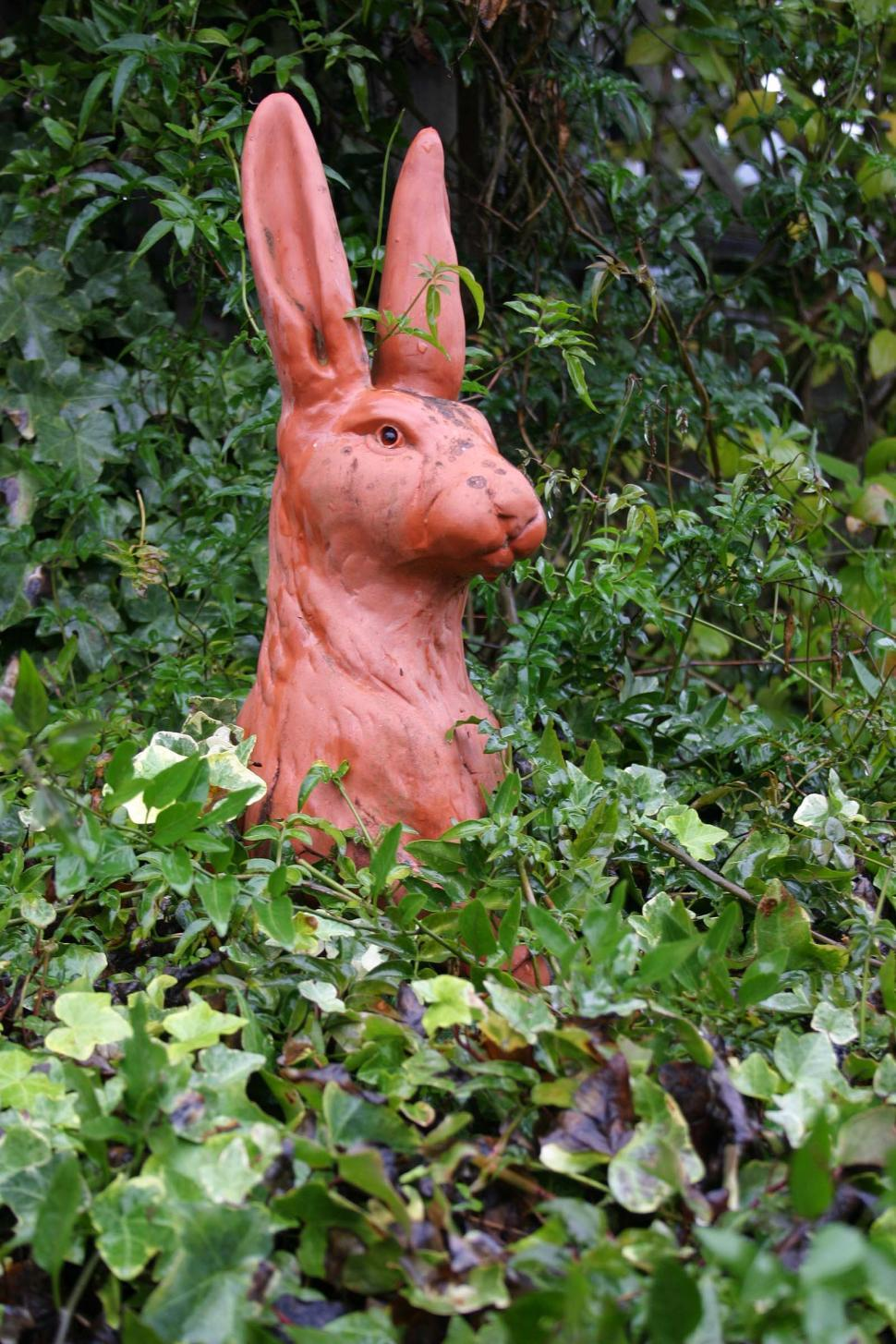 Download Free Stock Photo of garden rabbit sculpture statue ceramic clay whimsical plants animal