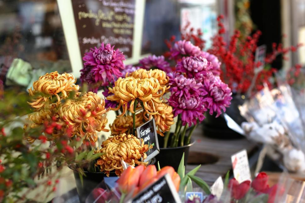 Download Free Stock Photo of Nature bouquet flower arrangement arrangement flower decoration flowers rose floral wedding roses petal blossom love bloom bunch romance vase romantic pink celebration