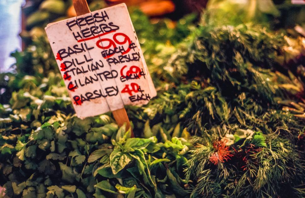 Download Free Stock Photo of Fresh Herbs