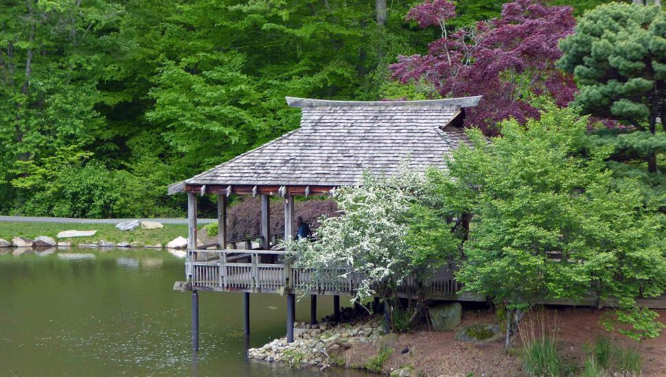 Download Free Stock Photo of Japanese Garden Tea House