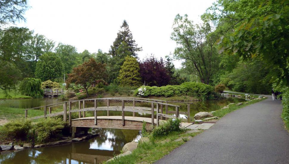 Download Free Stock Photo of Japanese Garden Wooden Bridges