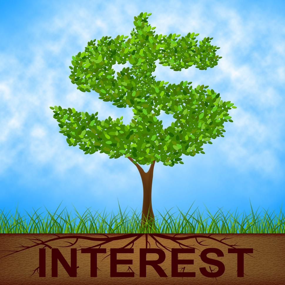 Download Free Stock Photo of Interest Tree Shows American Dollars And Branch