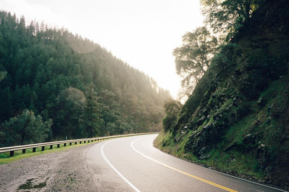 Download Free Stock Photo of road way bend landscape highway forest