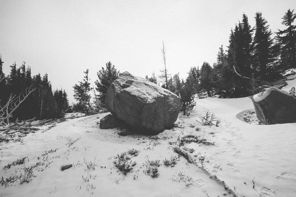 Download Free Stock Photo of snow mound landscape winter tree cold forest frost park mountain ice weather sky travel