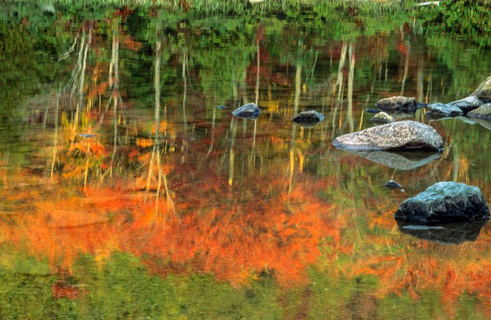 Download Free Stock HD Photo of Fall foliage reflected Online
