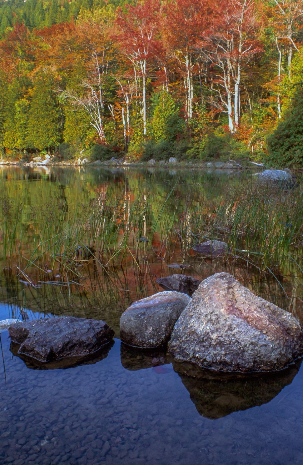 Download Free Stock HD Photo of View of Autumn shoreline Online