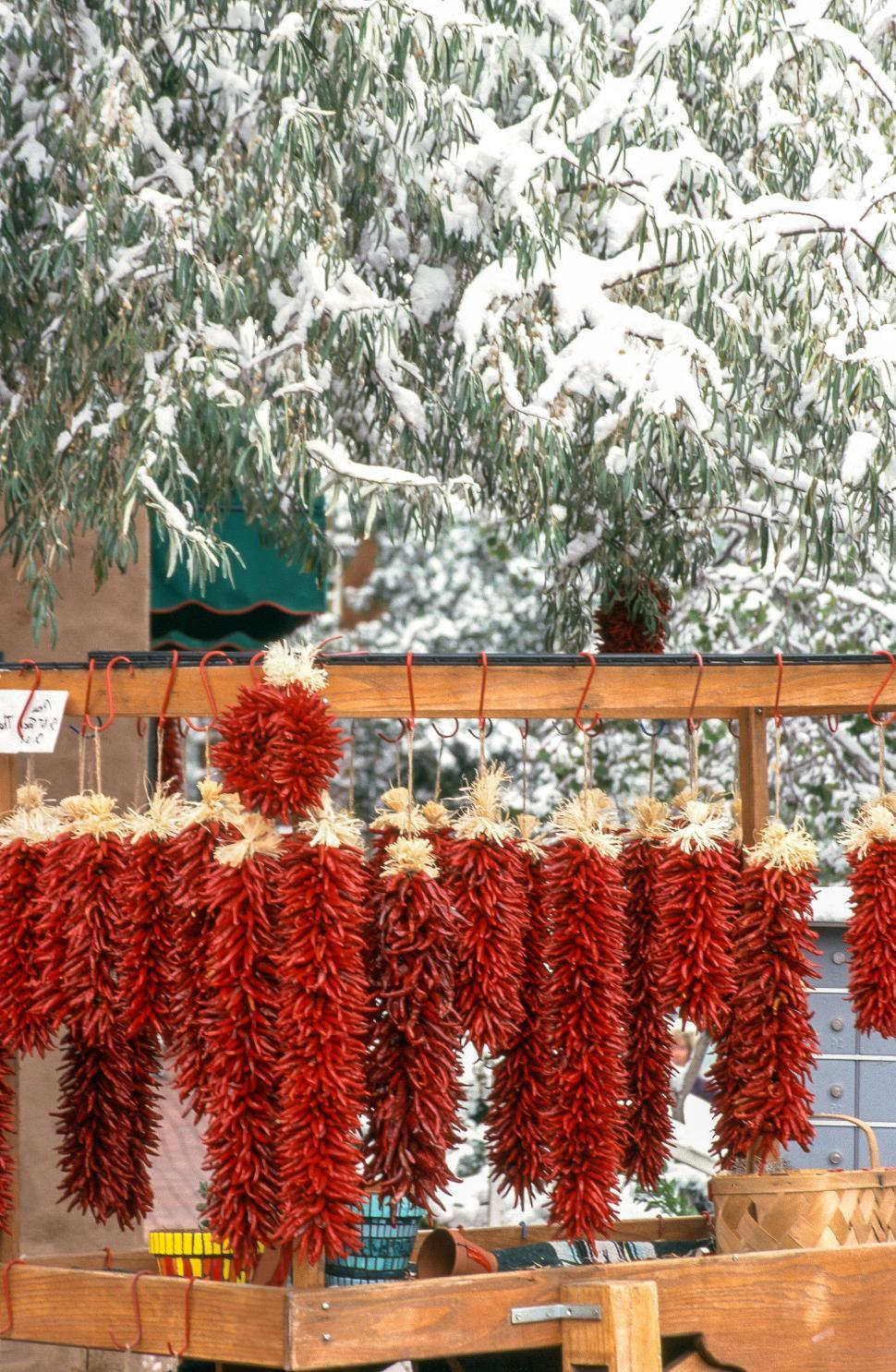 Download Free Stock Photo of Red chili ristras