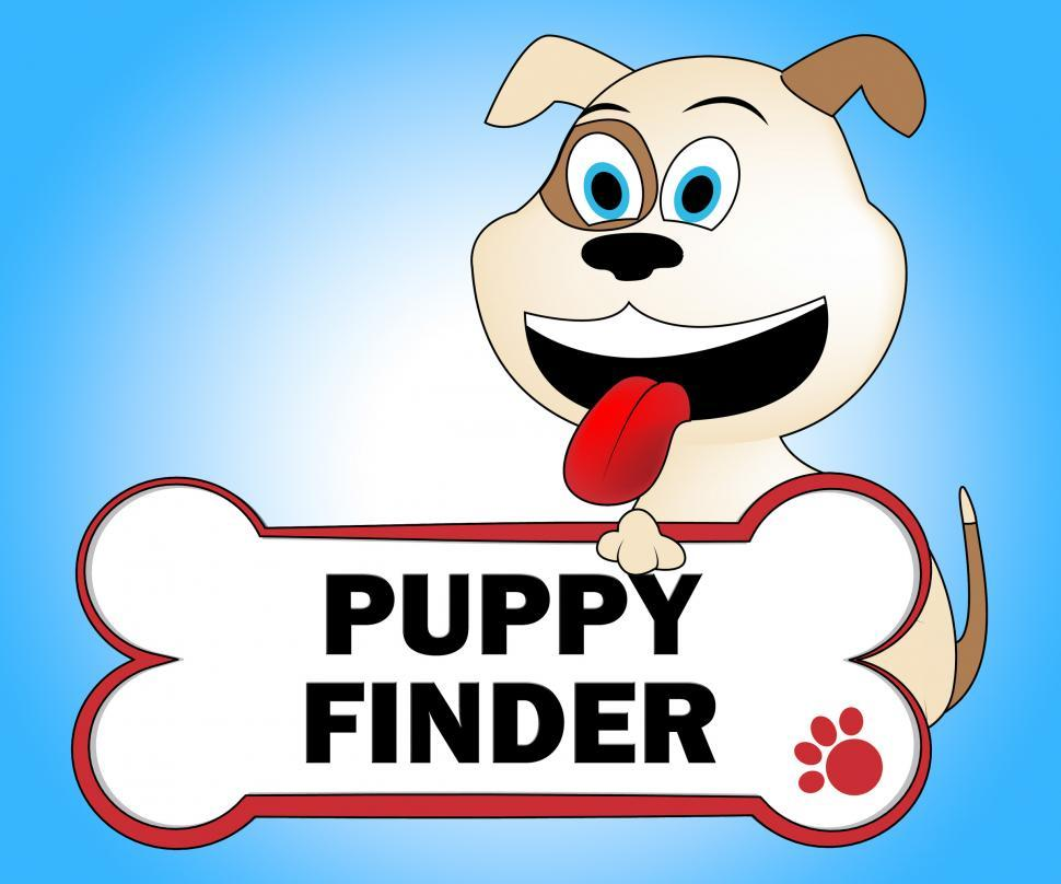 Download Free Stock HD Photo of Puppy Finder Means Search For And Canines Online