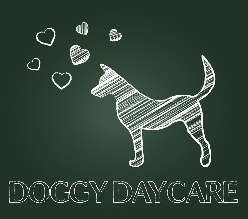 Download Free Stock Photo of Doggy Daycare Indicates Pedigree Childcare And Preschool
