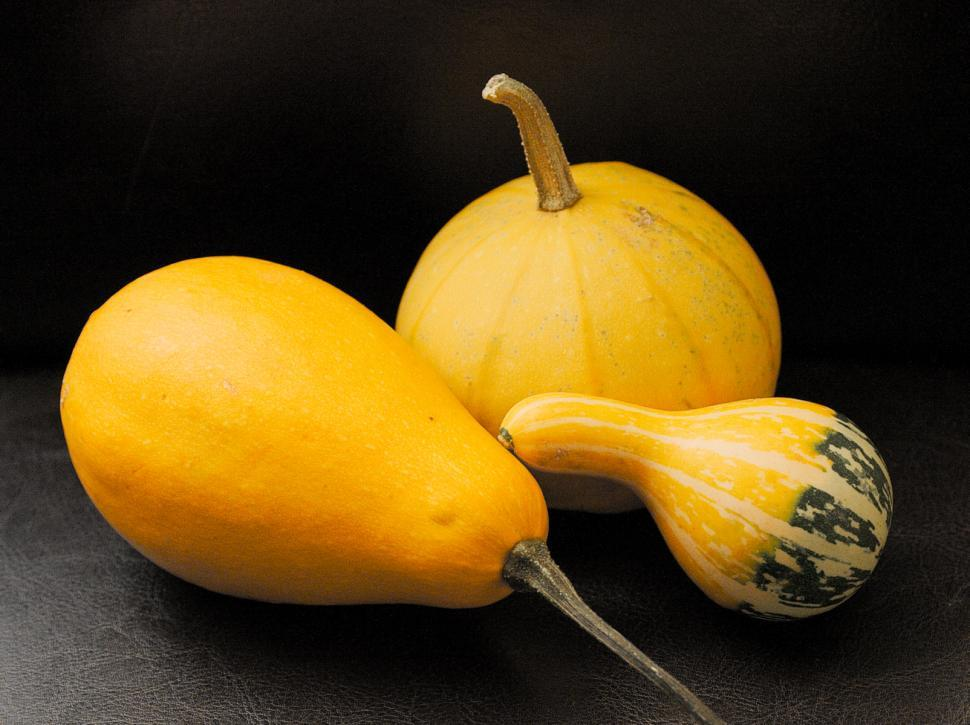Download Free Stock HD Photo of Small pumpkins Online