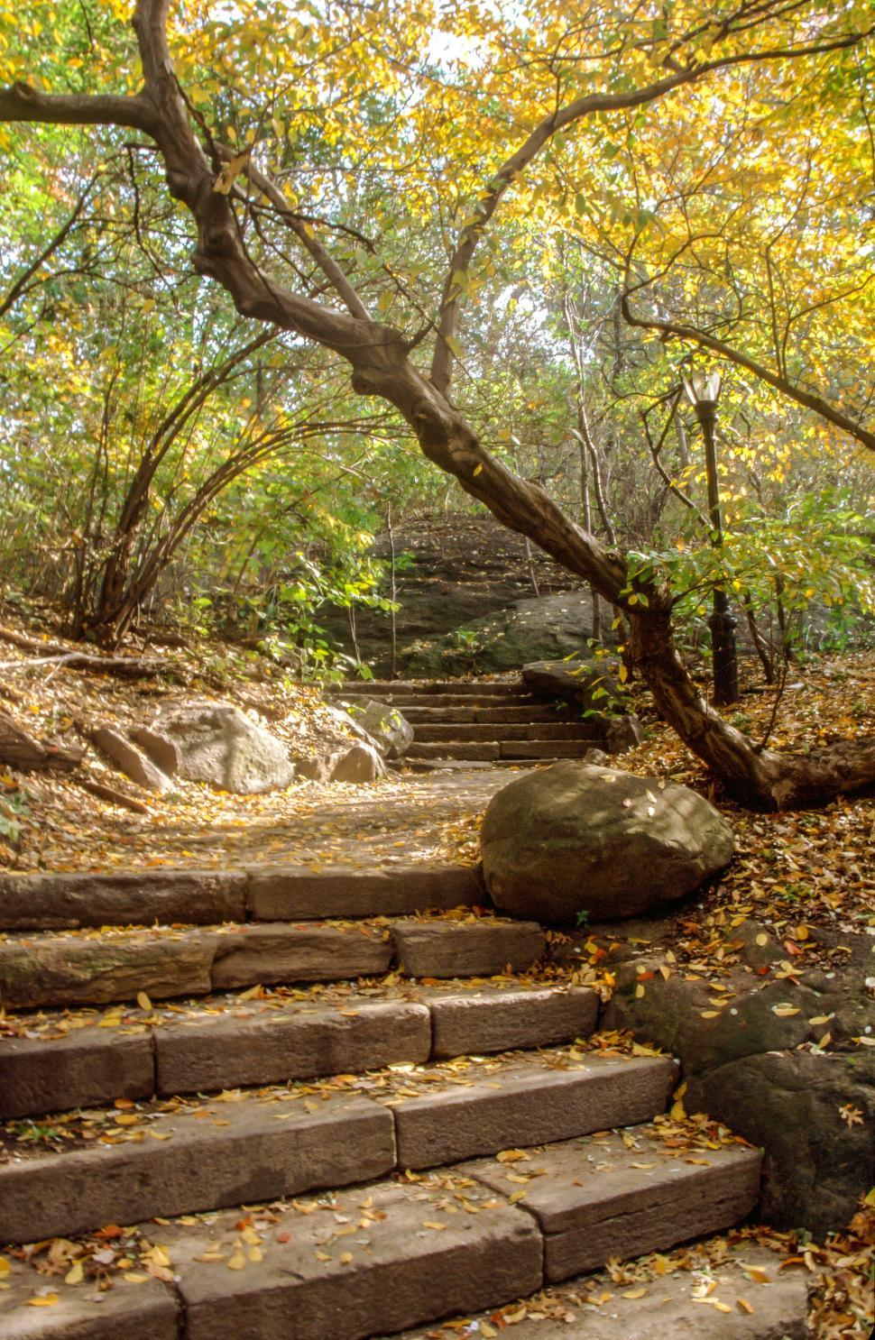 Download Free Stock Photo of Stone Stairs for hiking
