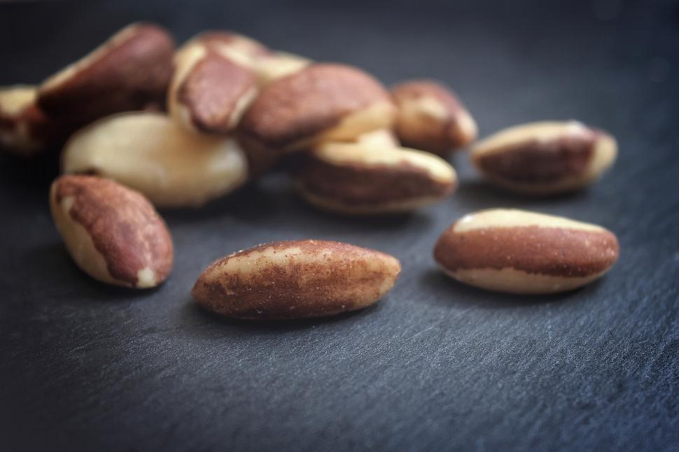 Download Free Stock Photo of Brazil Nuts - Fuzzy Faded Looks