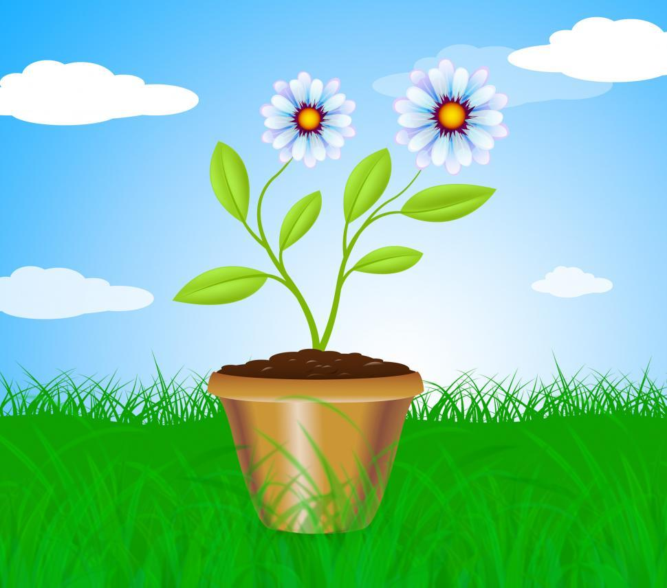 Download Free Stock Photo of Potted Plant Means Cultivation Gardening And Plants