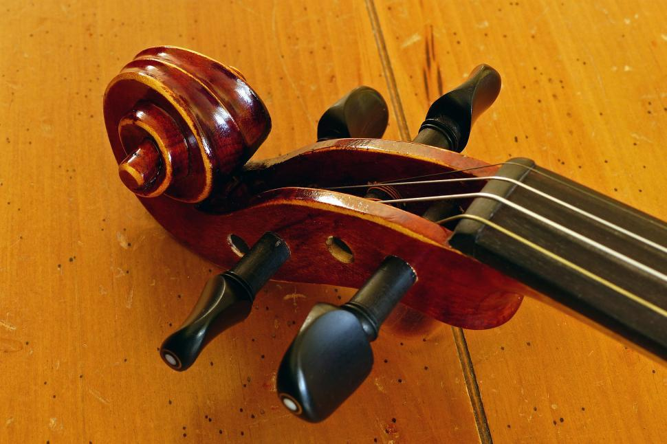 Download Free Stock HD Photo of Violin Pegs Online
