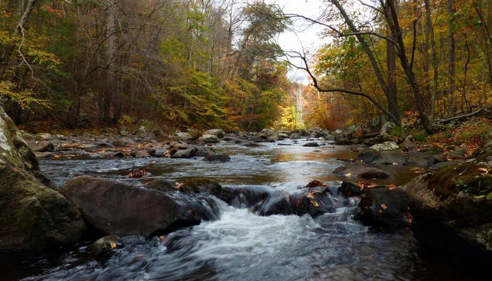 Download Free Stock Photo of Ken Lockwood Gorge in Autumn