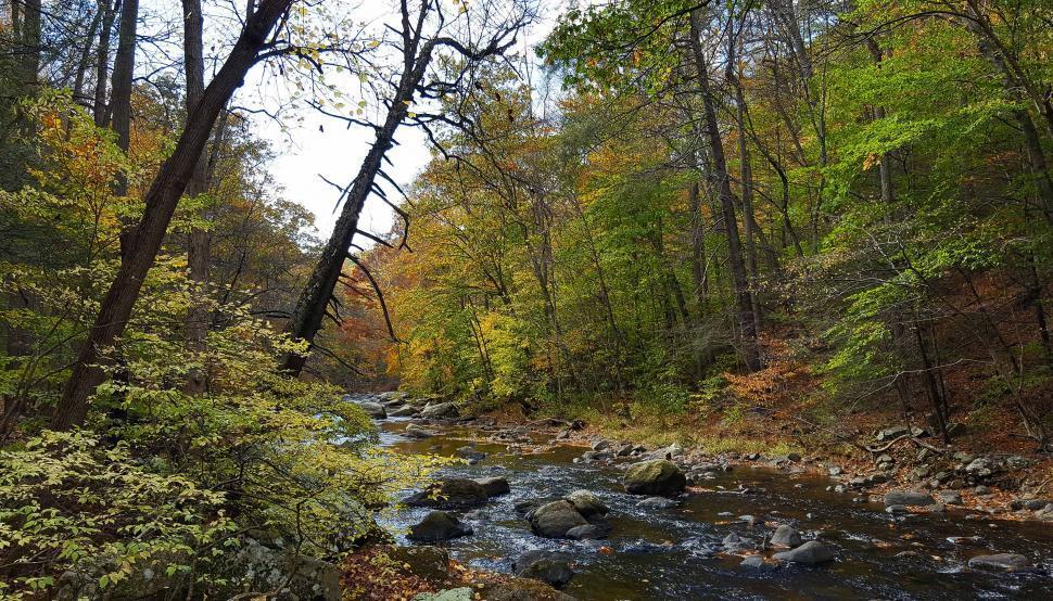Download Free Stock HD Photo of Stream in Ken Lockwood Gorge in Autumn Online