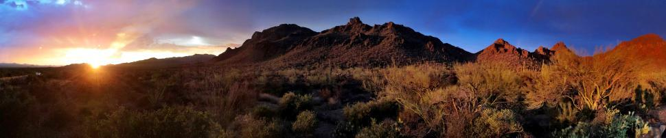 Download Free Stock HD Photo of Tucson Desert Landscape Online