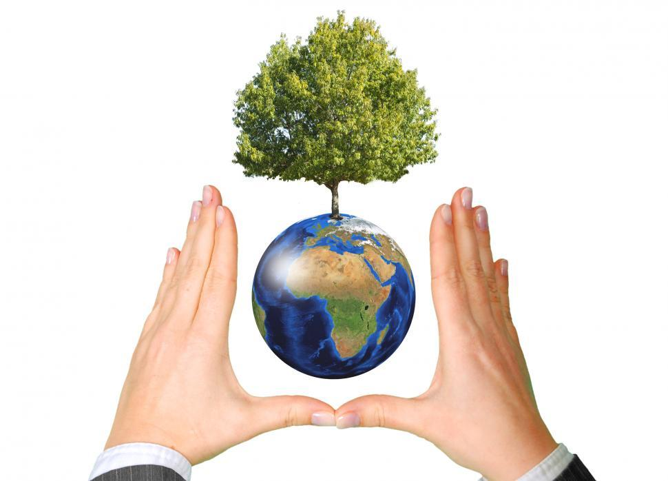 Download Free Stock Photo of Earth with Tree between Hands - Ecology Concept
