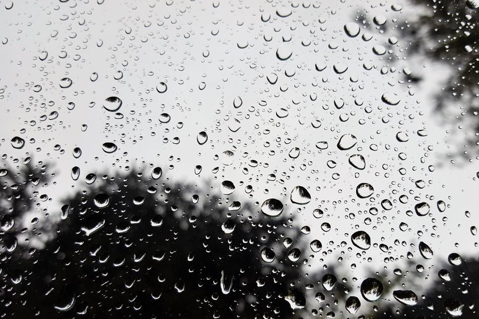 Download Free Stock Photo of Rain Drops On Car Windshield