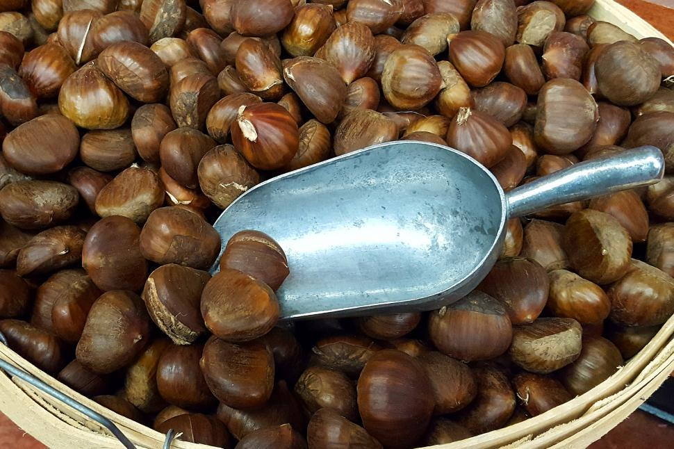 Download Free Stock HD Photo of Chestnuts Online