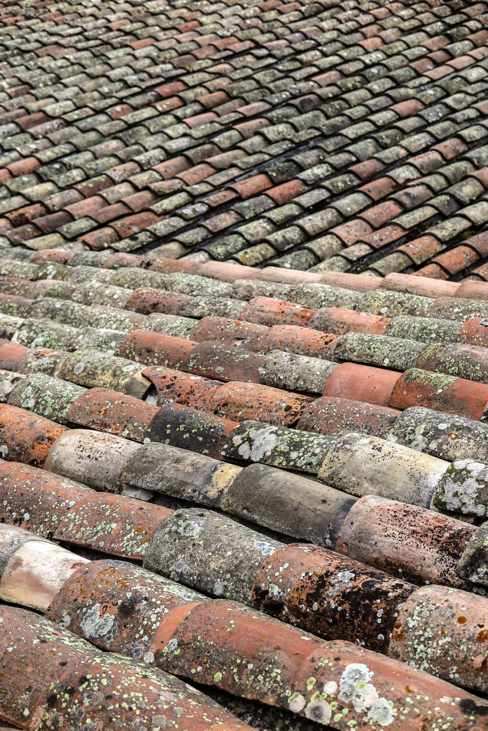 Download Free Stock HD Photo of Tile roof tiles Online