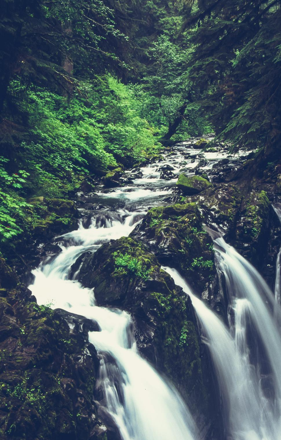 Download Free Stock HD Photo of Water Fall - Sol Duc Falls Online