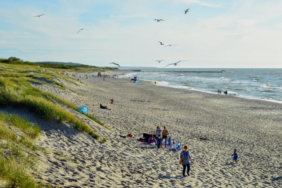 Download Free Stock Photo of People relax on the beach near the sand dunes with green grass. Baltic Sea