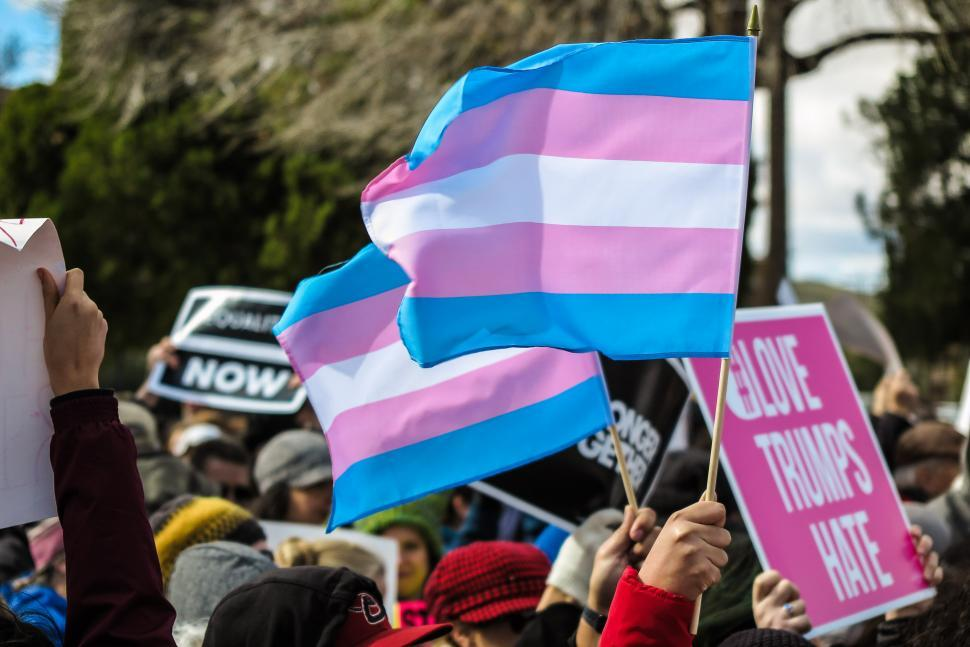 Download Free Stock HD Photo of Transgender rights flag Online